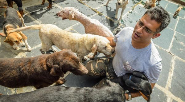A software engineer built a huge farm where he raises 735 homeless, old and sick dogs that nobody wants