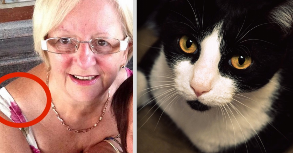 A 64-year-old woman's cat started behaving strangely - but then she realized he was trying to tell her something